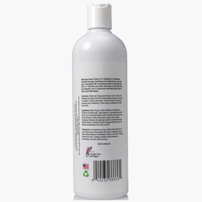 Clean & Clear 2 In 1 Shampoo & Conditioner Mint