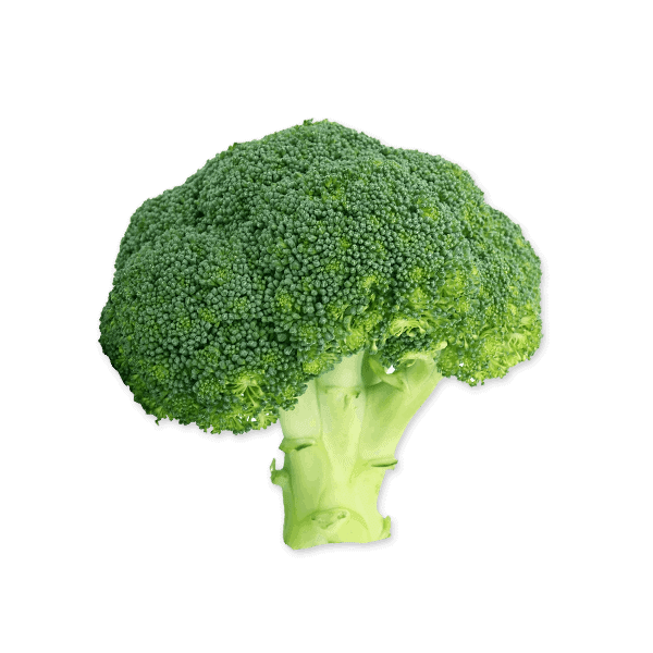 Broccoli 600x600