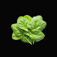 Pawmeal Spinach 200x200