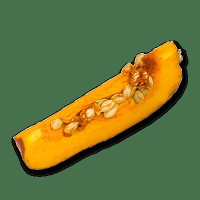Pumpkin 600x600