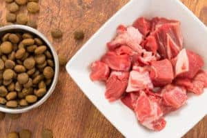Raw meat in a bowl as opposite of dry dog food