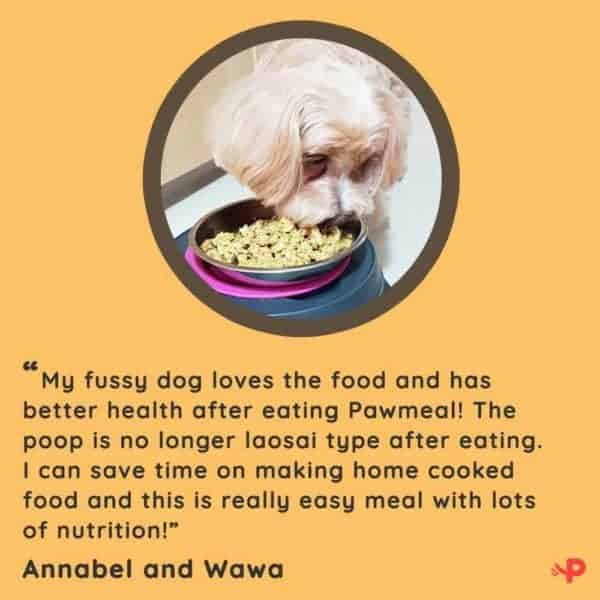 Pawmeal Wawa Review